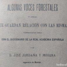 Libros antiguos: DICCIONARIO FORESTAL. ALGUNAS VOCES FORESTALES, JOSÉ JORDANA, IMP. RICARDO ROJAS, MADRID 1900 RARO. Lote 245196075