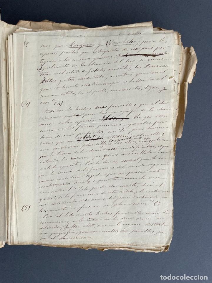 Libros antiguos: XIX - TRADUCCION MANUSCRITA AL ESPAÑOL DE EL ORIGEN DEL HOMBRE DE CHARLES DARWIN - - Foto 16 - 254757085