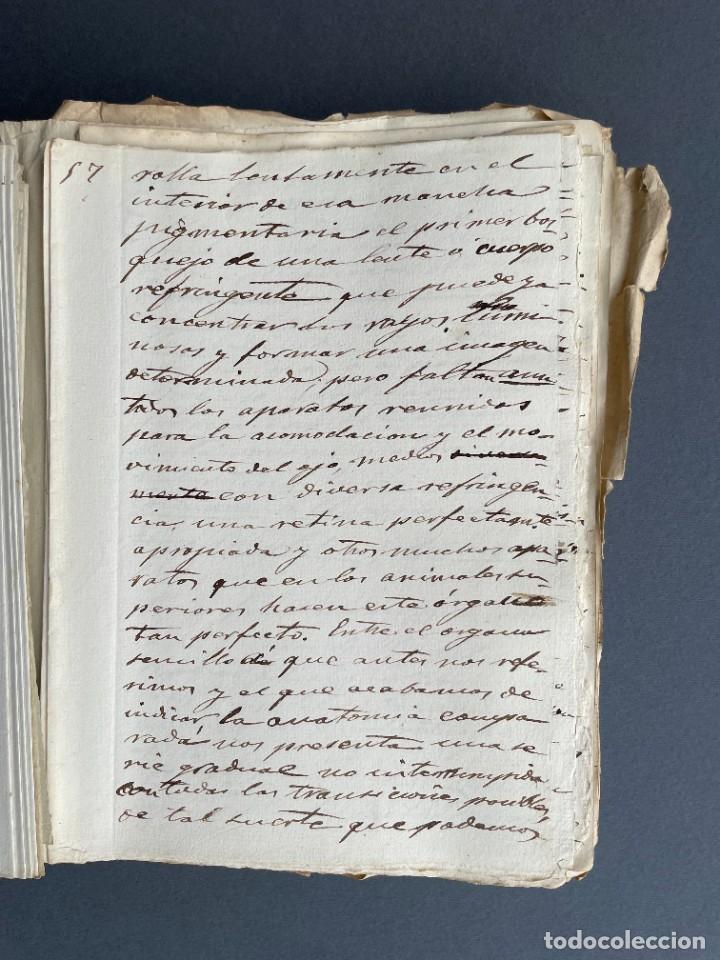 Libros antiguos: XIX - TRADUCCION MANUSCRITA AL ESPAÑOL DE EL ORIGEN DEL HOMBRE DE CHARLES DARWIN - - Foto 18 - 254757085