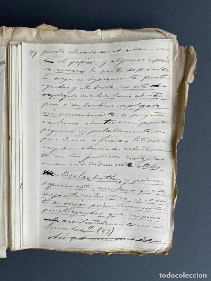 Libros antiguos: XIX - TRADUCCION MANUSCRITA AL ESPAÑOL DE EL ORIGEN DEL HOMBRE DE CHARLES DARWIN - - Foto 22 - 254757085