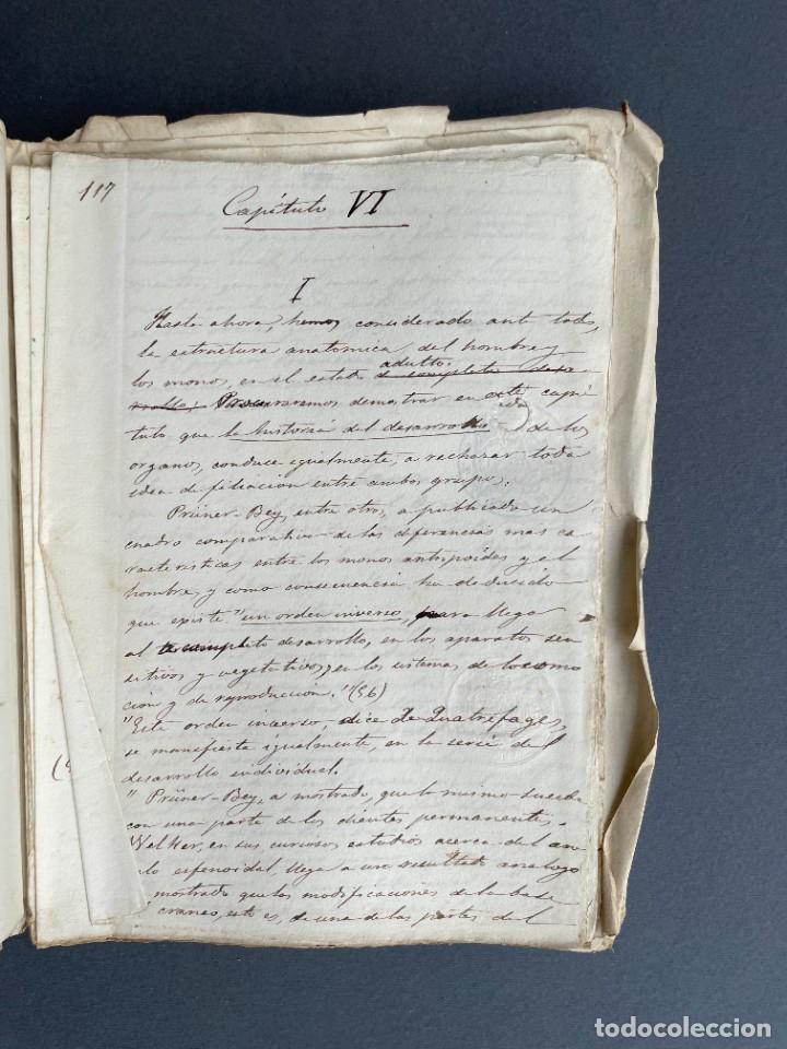 Libros antiguos: XIX - TRADUCCION MANUSCRITA AL ESPAÑOL DE EL ORIGEN DEL HOMBRE DE CHARLES DARWIN - - Foto 28 - 254757085