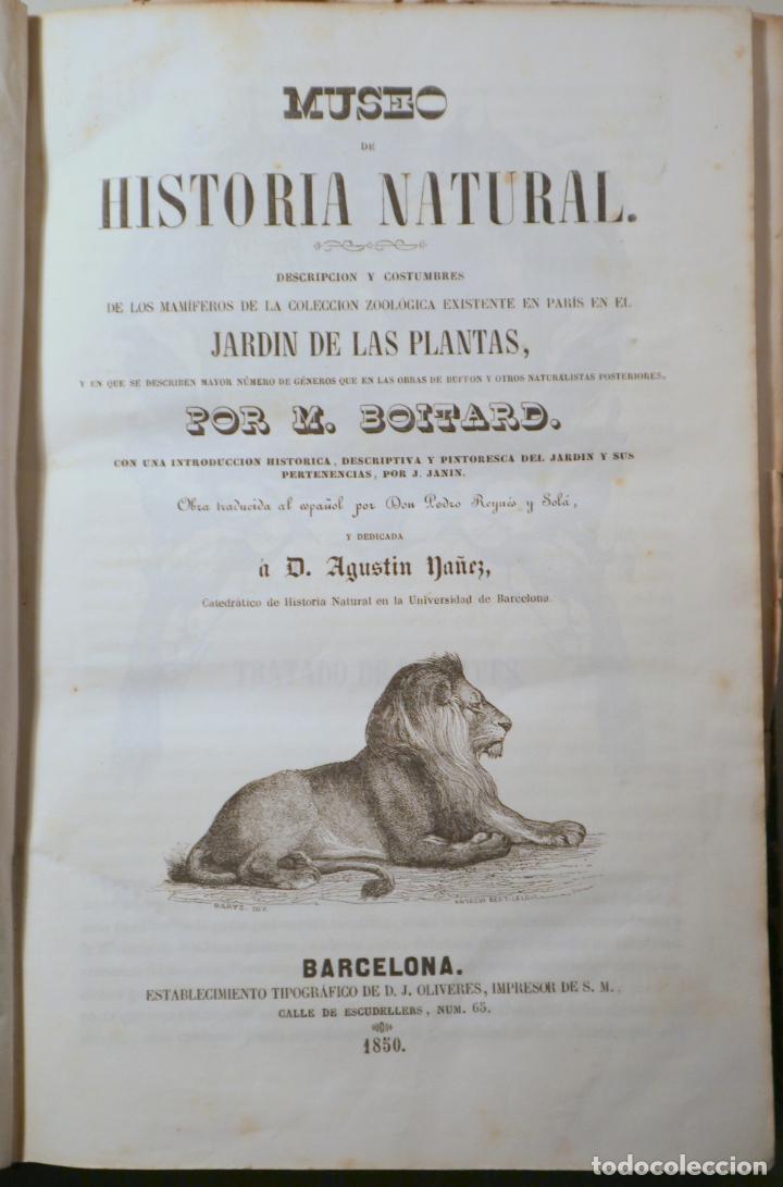 BOITARD, M. - MUSEO DE HISTORIA NATURAL. MAMÍFEROS - BARCELONA 1850 - MUY ILUSTRADO (Libros Antiguos, Raros y Curiosos - Ciencias, Manuales y Oficios - Biología y Botánica)