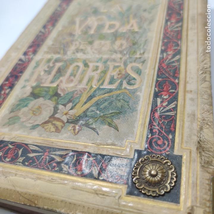 Libros antiguos: Preciosa obra La vida de las flores. Alfonso Karr y Taxile Delord. 2 tomos.Cientos litografías.1878 - Foto 2 - 257603235