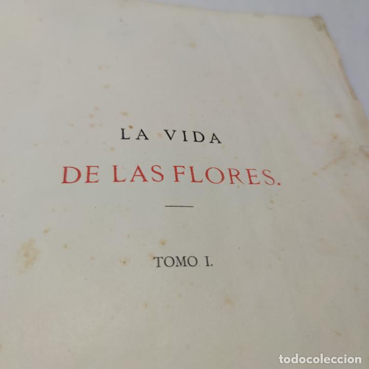 Libros antiguos: Preciosa obra La vida de las flores. Alfonso Karr y Taxile Delord. 2 tomos.Cientos litografías.1878 - Foto 4 - 257603235
