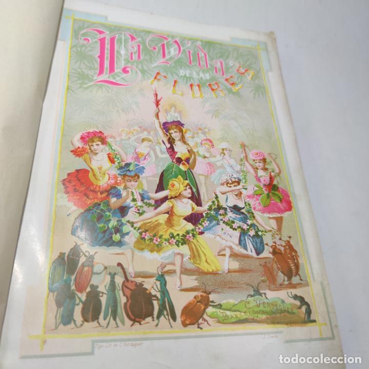 Libros antiguos: Preciosa obra La vida de las flores. Alfonso Karr y Taxile Delord. 2 tomos.Cientos litografías.1878 - Foto 6 - 257603235