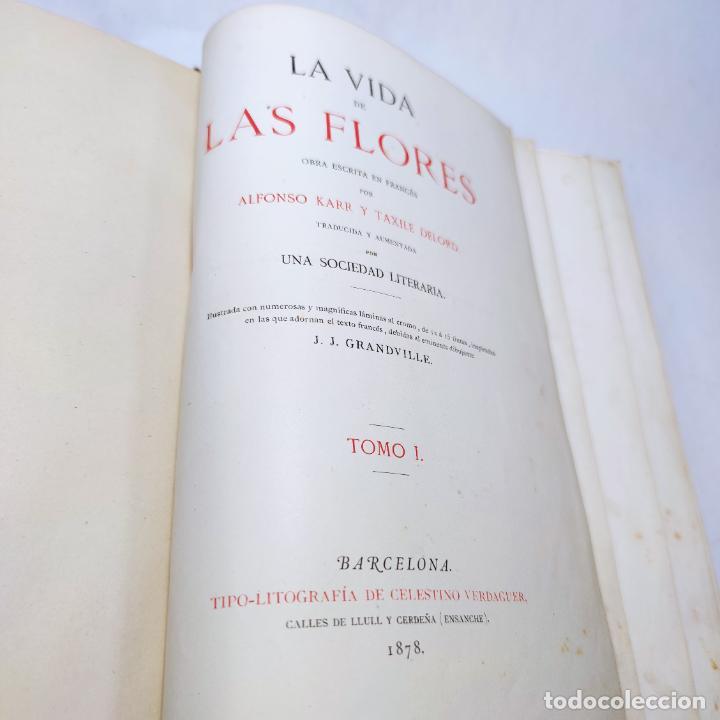 Libros antiguos: Preciosa obra La vida de las flores. Alfonso Karr y Taxile Delord. 2 tomos.Cientos litografías.1878 - Foto 7 - 257603235