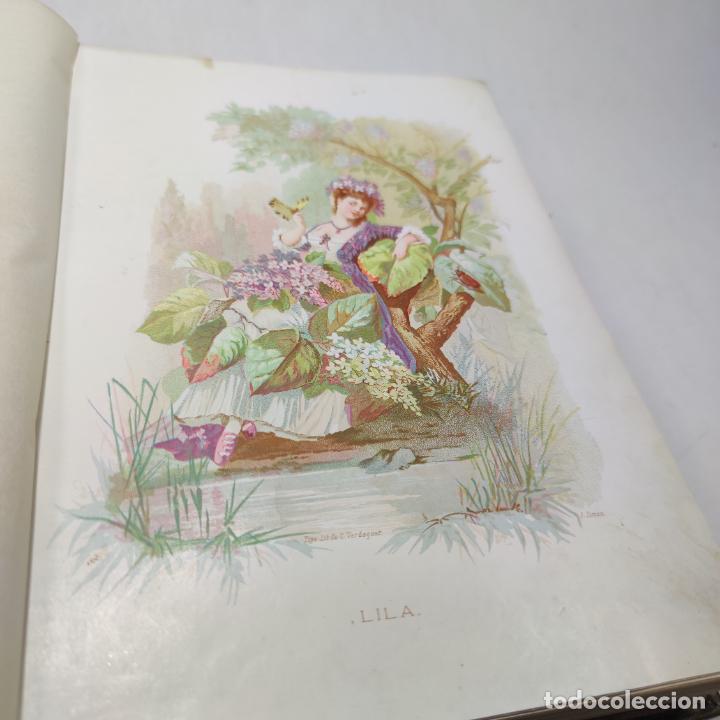 Libros antiguos: Preciosa obra La vida de las flores. Alfonso Karr y Taxile Delord. 2 tomos.Cientos litografías.1878 - Foto 11 - 257603235