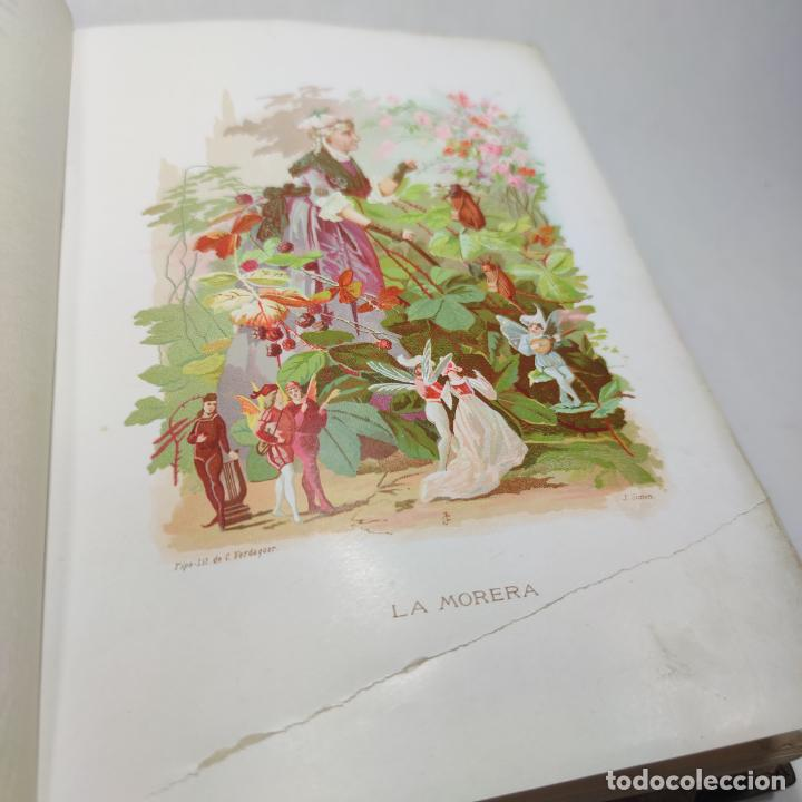 Libros antiguos: Preciosa obra La vida de las flores. Alfonso Karr y Taxile Delord. 2 tomos.Cientos litografías.1878 - Foto 14 - 257603235