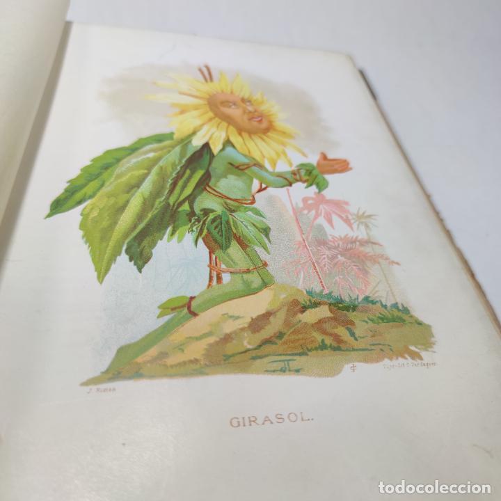 Libros antiguos: Preciosa obra La vida de las flores. Alfonso Karr y Taxile Delord. 2 tomos.Cientos litografías.1878 - Foto 16 - 257603235