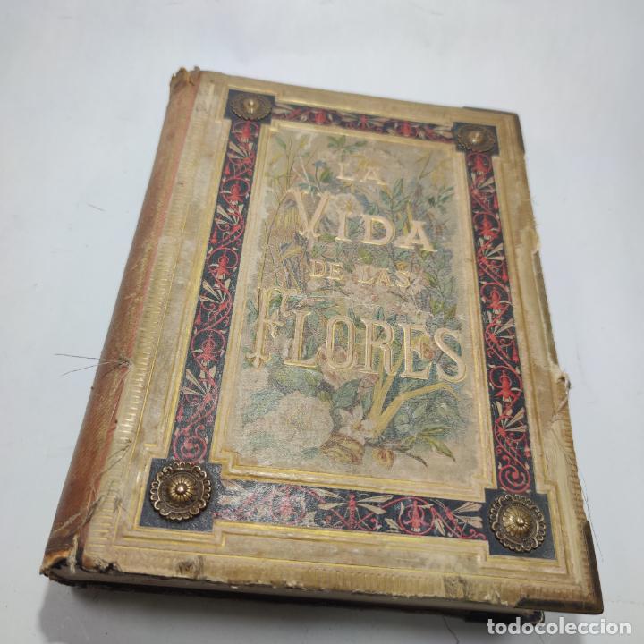 Libros antiguos: Preciosa obra La vida de las flores. Alfonso Karr y Taxile Delord. 2 tomos.Cientos litografías.1878 - Foto 21 - 257603235