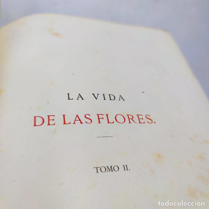 Libros antiguos: Preciosa obra La vida de las flores. Alfonso Karr y Taxile Delord. 2 tomos.Cientos litografías.1878 - Foto 22 - 257603235