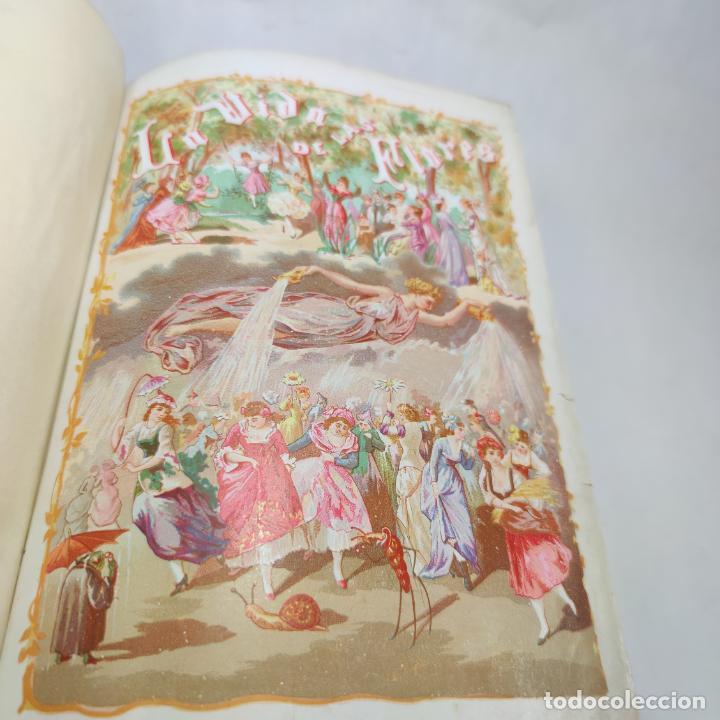 Libros antiguos: Preciosa obra La vida de las flores. Alfonso Karr y Taxile Delord. 2 tomos.Cientos litografías.1878 - Foto 23 - 257603235