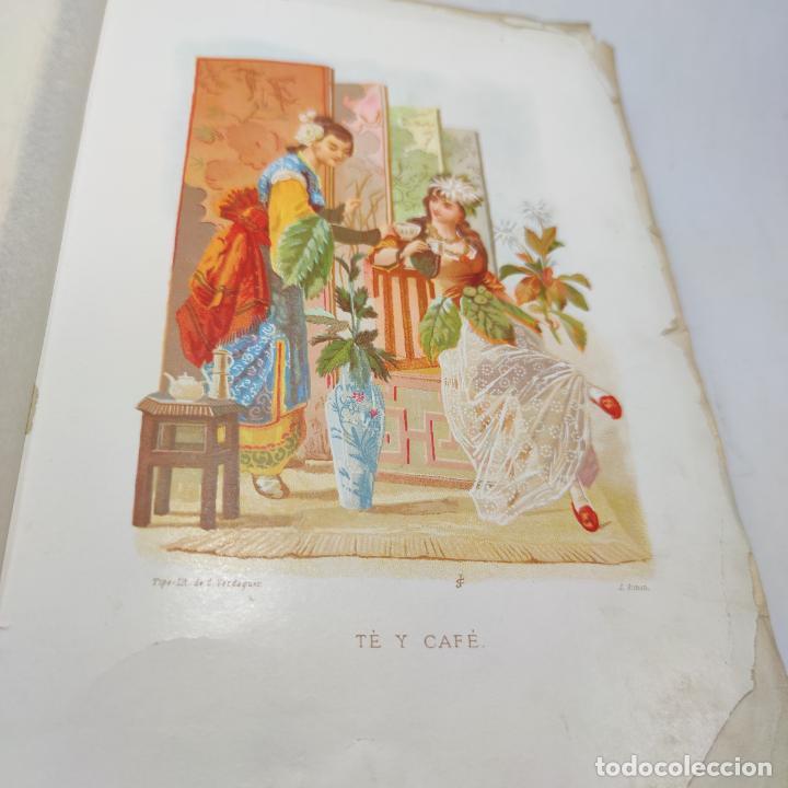 Libros antiguos: Preciosa obra La vida de las flores. Alfonso Karr y Taxile Delord. 2 tomos.Cientos litografías.1878 - Foto 25 - 257603235