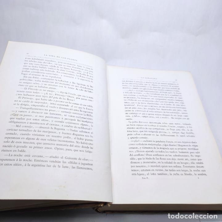 Libros antiguos: Preciosa obra La vida de las flores. Alfonso Karr y Taxile Delord. 2 tomos.Cientos litografías.1878 - Foto 27 - 257603235