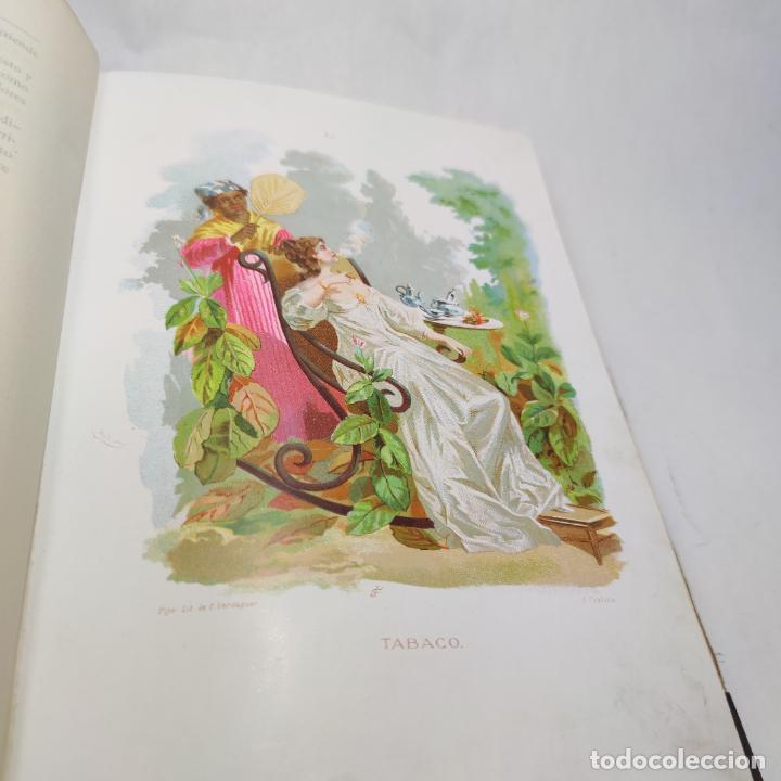 Libros antiguos: Preciosa obra La vida de las flores. Alfonso Karr y Taxile Delord. 2 tomos.Cientos litografías.1878 - Foto 29 - 257603235