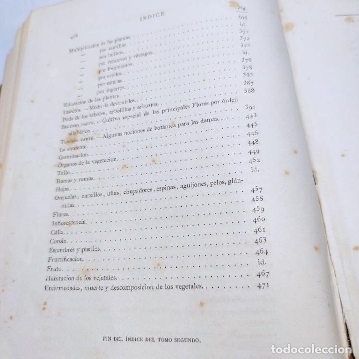 Libros antiguos: Preciosa obra La vida de las flores. Alfonso Karr y Taxile Delord. 2 tomos.Cientos litografías.1878 - Foto 32 - 257603235