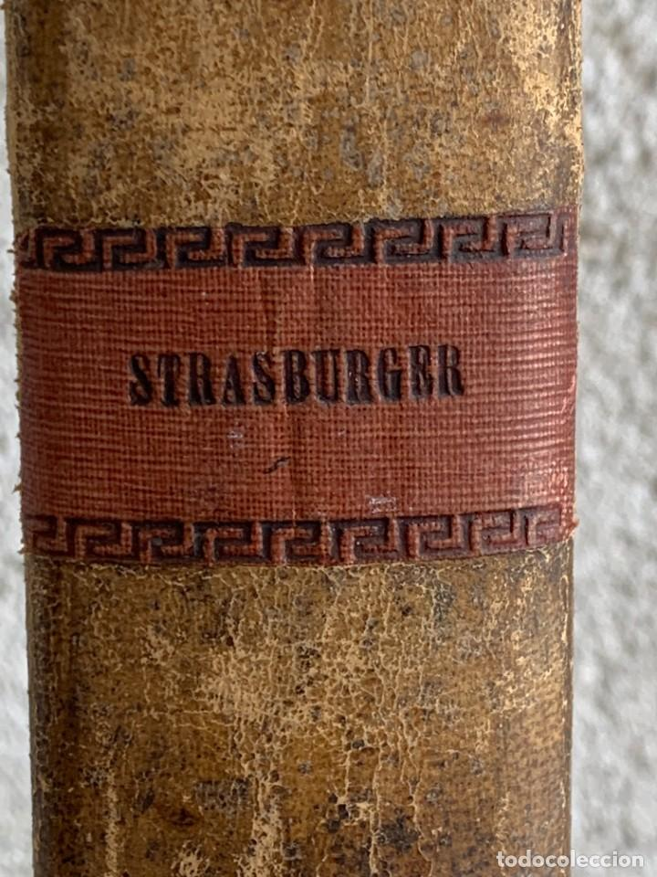 Libros antiguos: TRATADO DE BOTANICA EDUARDO STRASBURGER 15ª ED 1923 - Foto 2 - 287353688