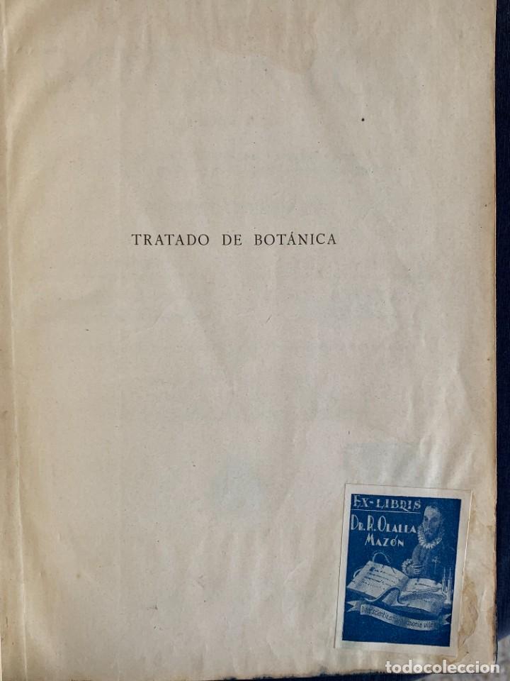 Libros antiguos: TRATADO DE BOTANICA EDUARDO STRASBURGER 15ª ED 1923 - Foto 5 - 287353688