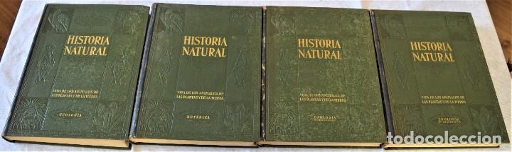 HISTORIA NATURAL - INSTITUTO GALLACH - COMPLETA 4 TOMOS ZOOLOGÍA, BOTÁNICA Y GEOLOGÍA - AÑO (Libros Antiguos, Raros y Curiosos - Ciencias, Manuales y Oficios - Biología y Botánica)