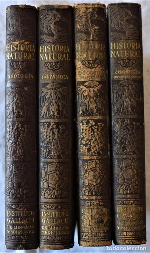 Libros antiguos: HISTORIA NATURAL - INSTITUTO GALLACH - COMPLETA 4 TOMOS ZOOLOGÍA, BOTÁNICA Y GEOLOGÍA - AÑO - Foto 2 - 260582805