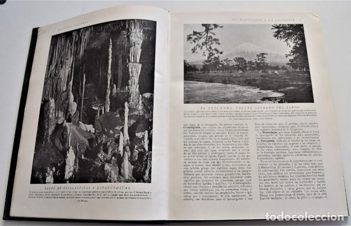 Libros antiguos: HISTORIA NATURAL - INSTITUTO GALLACH - COMPLETA 4 TOMOS ZOOLOGÍA, BOTÁNICA Y GEOLOGÍA - AÑO - Foto 4 - 260582805
