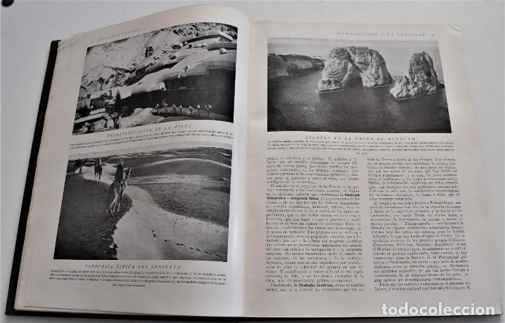 Libros antiguos: HISTORIA NATURAL - INSTITUTO GALLACH - COMPLETA 4 TOMOS ZOOLOGÍA, BOTÁNICA Y GEOLOGÍA - AÑO - Foto 5 - 260582805