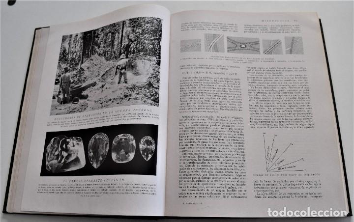 Libros antiguos: HISTORIA NATURAL - INSTITUTO GALLACH - COMPLETA 4 TOMOS ZOOLOGÍA, BOTÁNICA Y GEOLOGÍA - AÑO - Foto 7 - 260582805