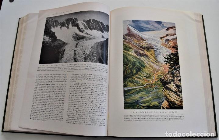 Libros antiguos: HISTORIA NATURAL - INSTITUTO GALLACH - COMPLETA 4 TOMOS ZOOLOGÍA, BOTÁNICA Y GEOLOGÍA - AÑO - Foto 10 - 260582805