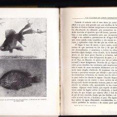 Libros antiguos: PECES, MOLUSCOS, PULPOS, ETC. DE ANGEL CABRERA - ESPASA CALPE AÑO 1934 - 3ª EDICIÓN. Lote 262614575
