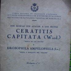 Libros antiguos: DOS MOSCAS QUE ATACAN A LOS FRUTOS: CERATITIS CAPITATA Y DROSOPHILA AMPELOPHILA - ALTES 1927. Lote 263135850