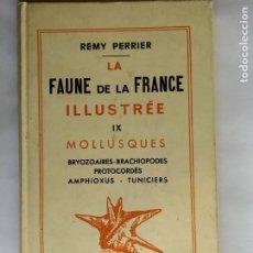 Libros antiguos: LA FAUNE DE LA FRANCE ILLUSTRÉE, TOME IX, MOLLUSQUES: BRYOZOAIRES, BRACHIOPODES., PERRIER, REMY 1930. Lote 263174610