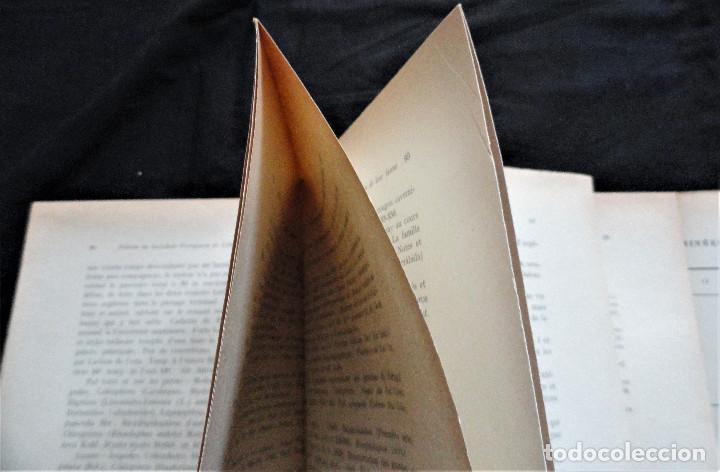 Libros antiguos: BOLETIM SOCIEDADE PORTUGUESA CIÊNCIAS NATURAIS - Lisboa 1961 - 1962. Mapa Geológico Mortágua - Foto 8 - 265804289