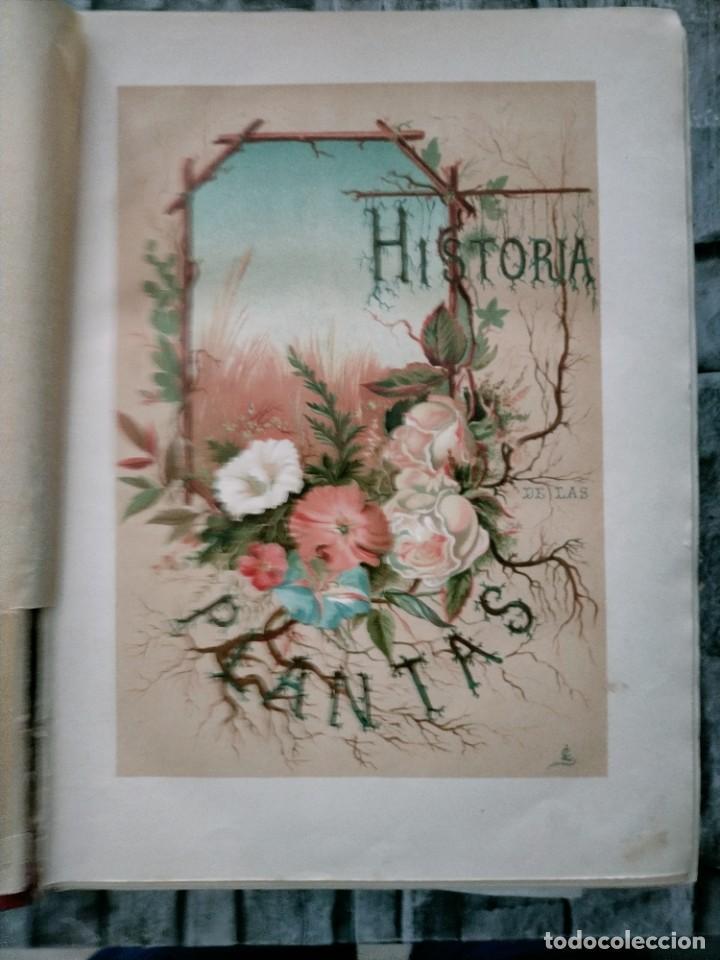 Libros antiguos: HISTORIA GENERAL DE LA AGRICULTURA TOMO 1 L. FIGUIER VER FOTOS J. SEX BARCELONA - Foto 4 - 268881529
