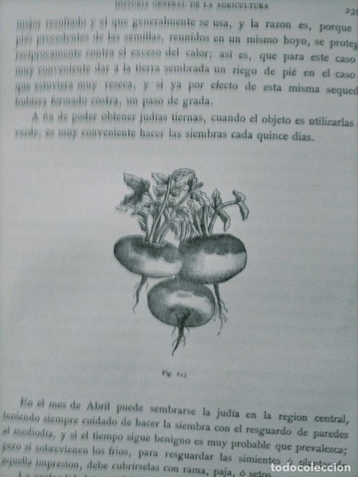 Libros antiguos: HISTORIA GENERAL DE LA AGRICULTURA TOMO 1 L. FIGUIER VER FOTOS J. SEX BARCELONA - Foto 8 - 268881529
