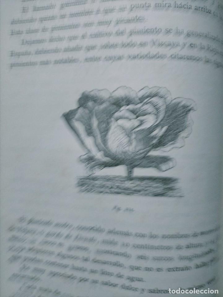 Libros antiguos: HISTORIA GENERAL DE LA AGRICULTURA TOMO 1 L. FIGUIER VER FOTOS J. SEX BARCELONA - Foto 9 - 268881529