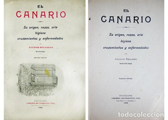 RECASENS, ANTONIO. EL CANARIO. SU ORIGEN, RAZAS, CRÍA, HIGIENE, CRUZAMIENTOS Y ENFERMEDADES. 1926. (Libros Antiguos, Raros y Curiosos - Ciencias, Manuales y Oficios - Biología y Botánica)