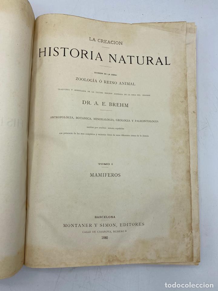 Libros antiguos: LA HISTORIA NATURAL. DR. A. E. BREHM. DEL TOMO 1 AL 7. EDITORES MONTANER Y SIMON.BARCELONA,1880-81. - Foto 3 - 269069853