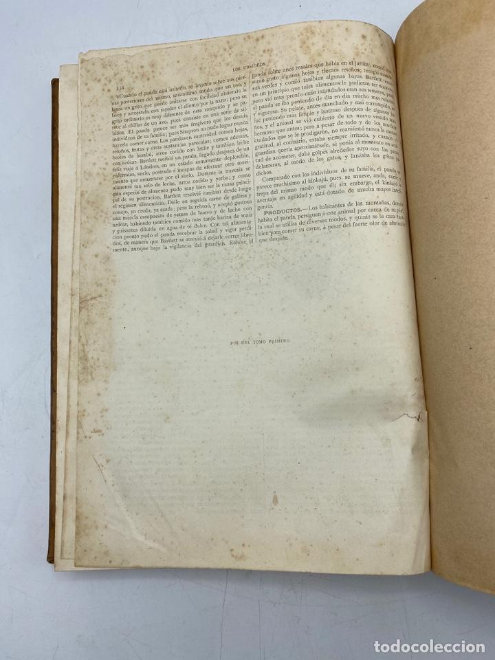 Libros antiguos: LA HISTORIA NATURAL. DR. A. E. BREHM. DEL TOMO 1 AL 7. EDITORES MONTANER Y SIMON.BARCELONA,1880-81. - Foto 7 - 269069853