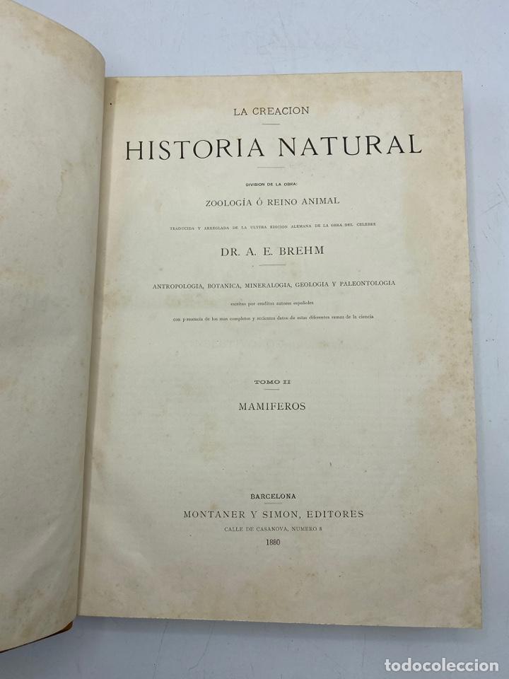 Libros antiguos: LA HISTORIA NATURAL. DR. A. E. BREHM. DEL TOMO 1 AL 7. EDITORES MONTANER Y SIMON.BARCELONA,1880-81. - Foto 10 - 269069853