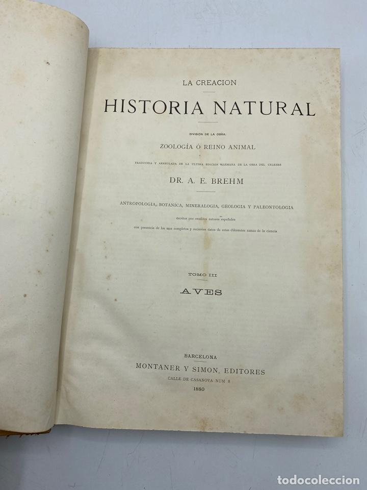Libros antiguos: LA HISTORIA NATURAL. DR. A. E. BREHM. DEL TOMO 1 AL 7. EDITORES MONTANER Y SIMON.BARCELONA,1880-81. - Foto 19 - 269069853