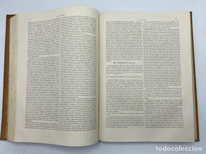 Libros antiguos: LA HISTORIA NATURAL. DR. A. E. BREHM. DEL TOMO 1 AL 7. EDITORES MONTANER Y SIMON.BARCELONA,1880-81. - Foto 21 - 269069853