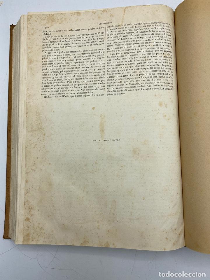 Libros antiguos: LA HISTORIA NATURAL. DR. A. E. BREHM. DEL TOMO 1 AL 7. EDITORES MONTANER Y SIMON.BARCELONA,1880-81. - Foto 23 - 269069853