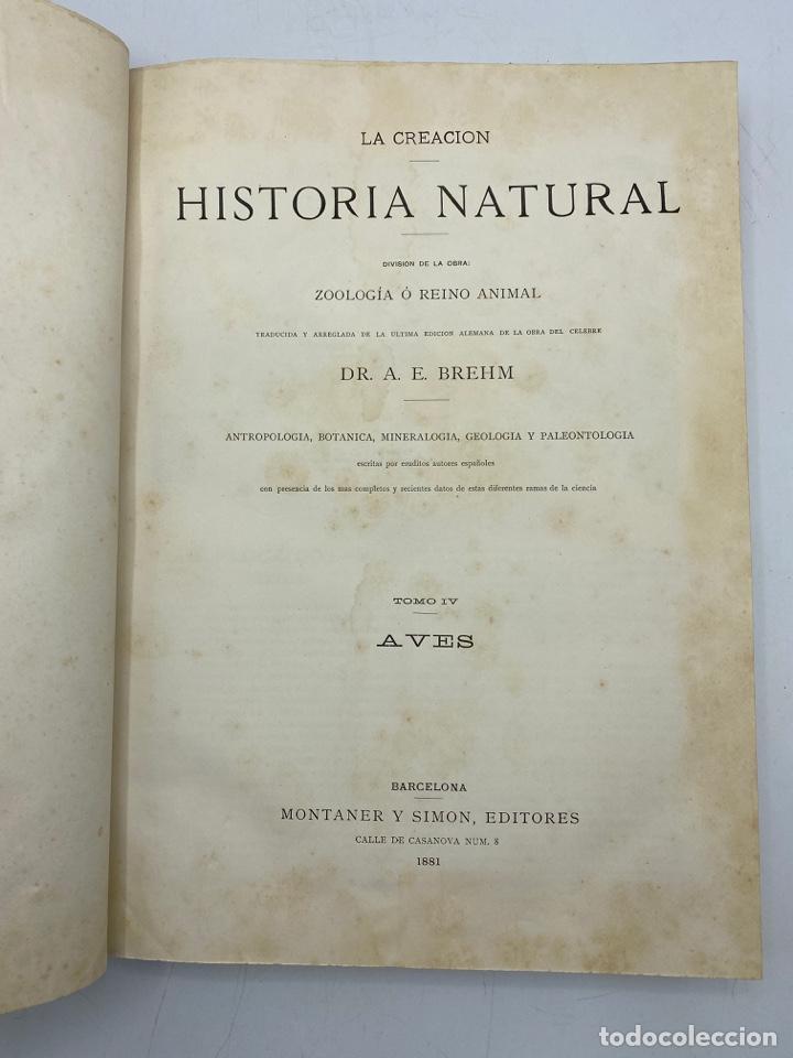 Libros antiguos: LA HISTORIA NATURAL. DR. A. E. BREHM. DEL TOMO 1 AL 7. EDITORES MONTANER Y SIMON.BARCELONA,1880-81. - Foto 26 - 269069853