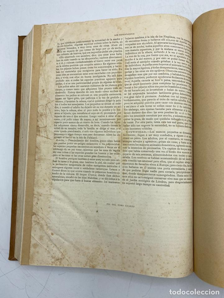 Libros antiguos: LA HISTORIA NATURAL. DR. A. E. BREHM. DEL TOMO 1 AL 7. EDITORES MONTANER Y SIMON.BARCELONA,1880-81. - Foto 30 - 269069853