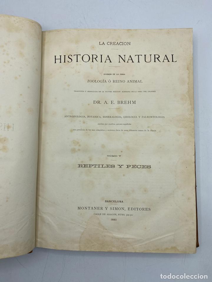 Libros antiguos: LA HISTORIA NATURAL. DR. A. E. BREHM. DEL TOMO 1 AL 7. EDITORES MONTANER Y SIMON.BARCELONA,1880-81. - Foto 33 - 269069853
