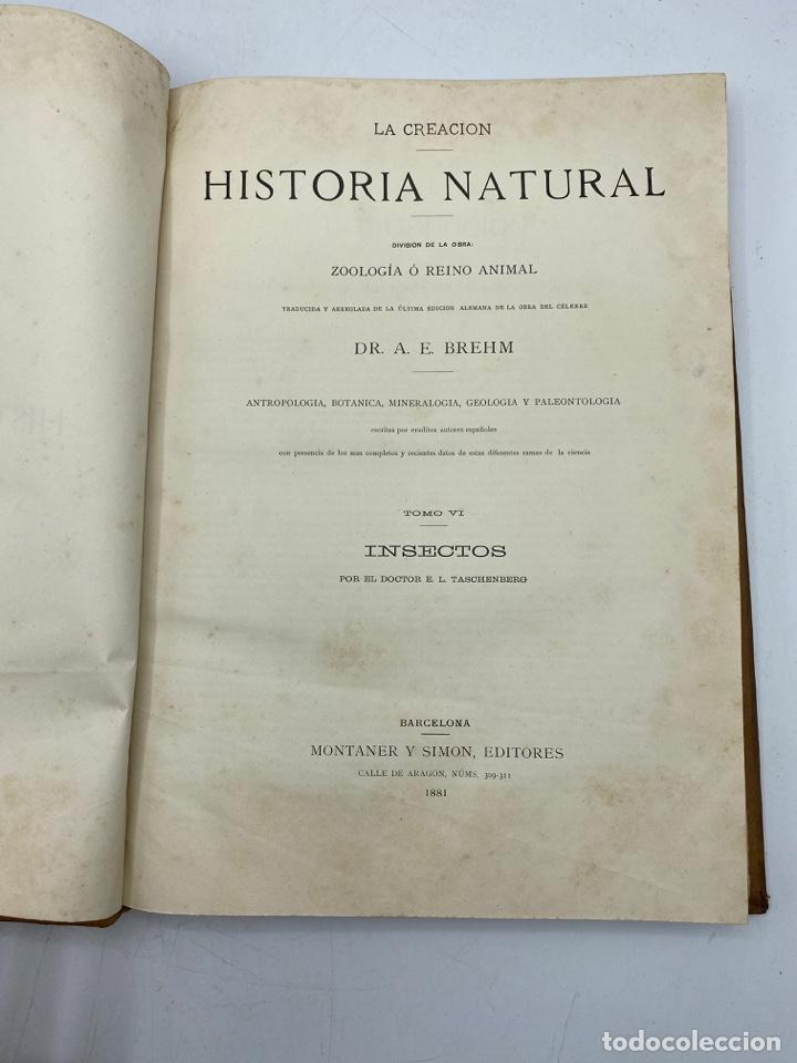 Libros antiguos: LA HISTORIA NATURAL. DR. A. E. BREHM. DEL TOMO 1 AL 7. EDITORES MONTANER Y SIMON.BARCELONA,1880-81. - Foto 41 - 269069853