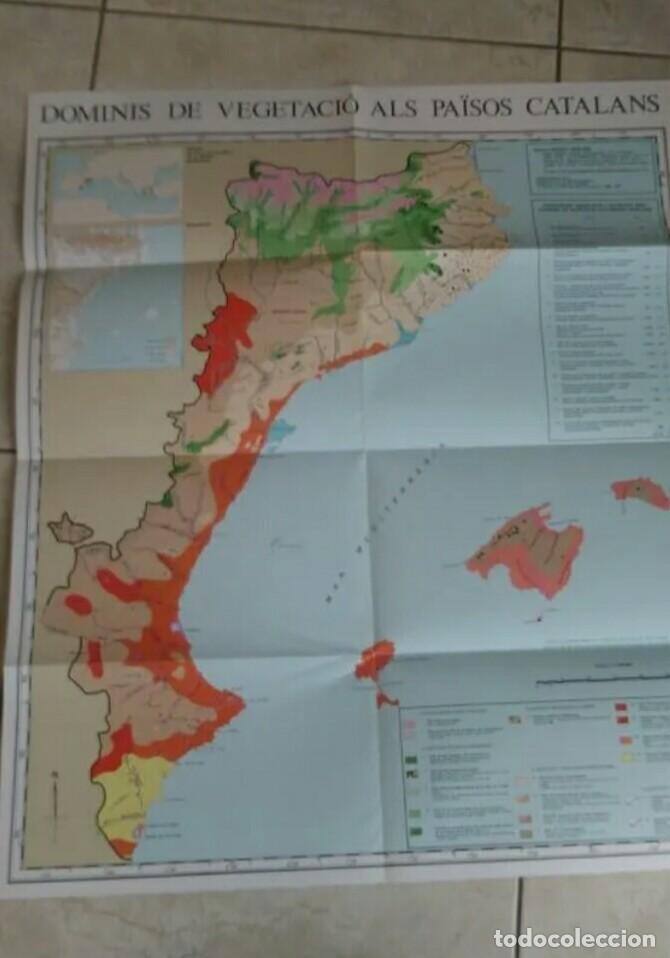 Libros antiguos: Libro de botanica la vegetació dels paisos catalans ramon folch Guillén incluye mapa desplegable - Foto 2 - 270004703
