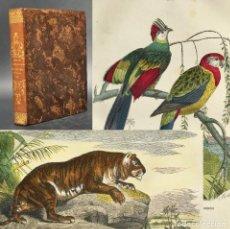 Libros antiguos: AÑO 1856 - HISTORIA NATURAL - BELLAS LAMINAS ILUMINADAS -. Lote 271538118