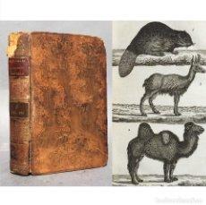 Libros antiguos: AÑO 1816 - HISTORIA NATURAL - BELLOS GRABADOS - NOUVEAU DICTIONNAIRE D'HISTOIRE NATURELLE. Lote 271543788