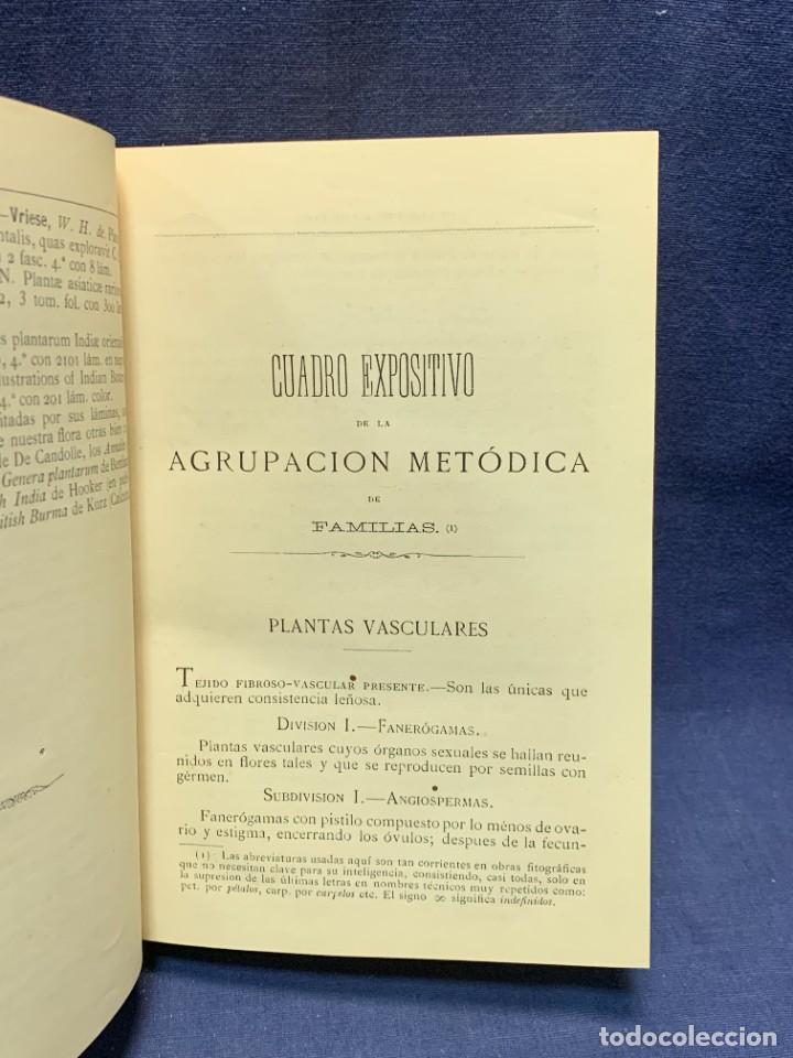 Libros antiguos: LIBRO GENEROS PLANTAS LEÑOSAS DE FILIPINAS SEBASTIAN VIDAL Y SOLER 1883 FIRMADO 22X16CMS - Foto 6 - 281035433